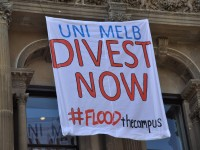 """Banner hanging from the University's MSD building with the words """"UniMelb Divest Now #FLOODthecampus"""""""